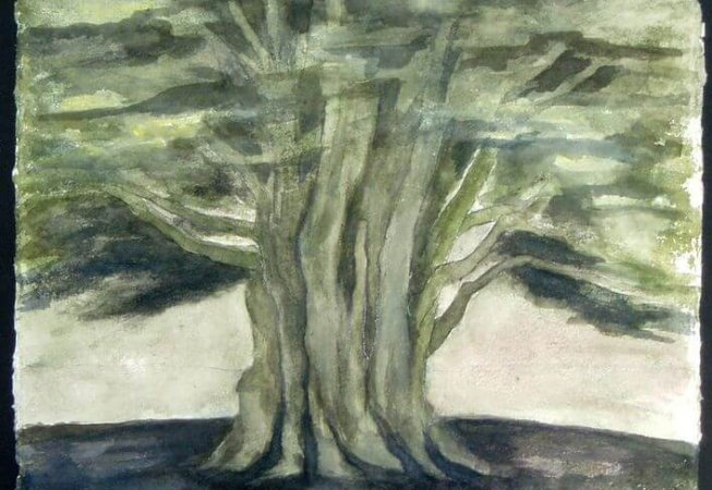 Joy Godfrey The Clevedon Cedar watercolour on handmade paper