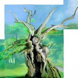 The Laund Oak